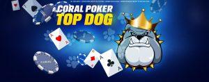 cara menang poker